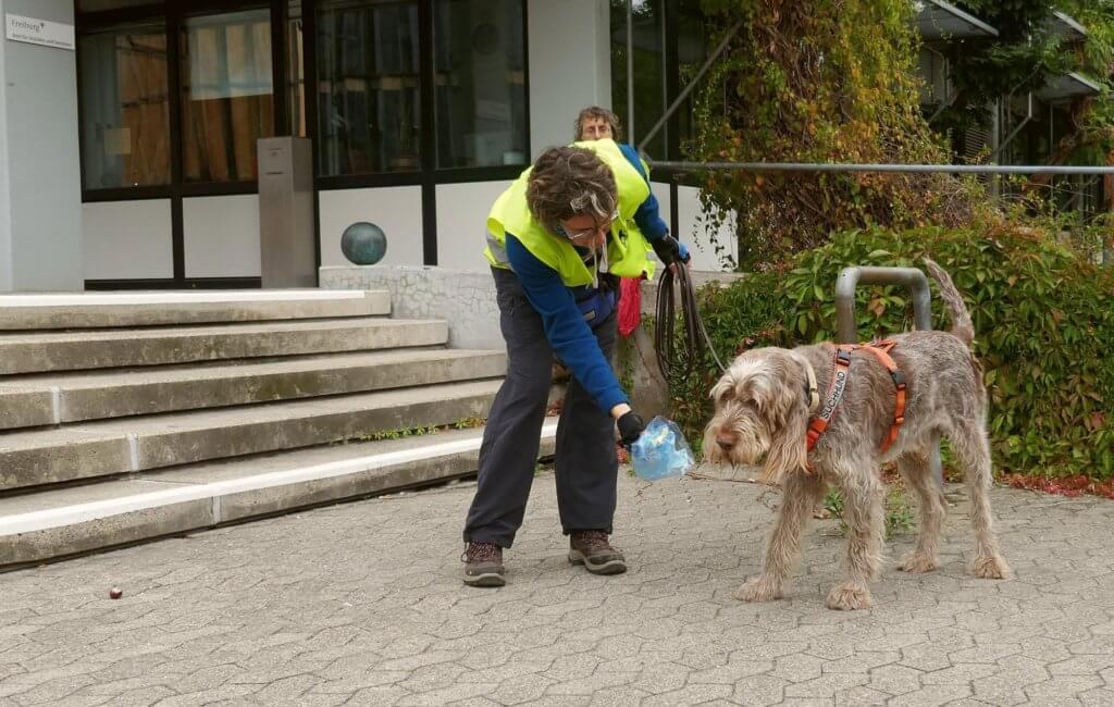Hundeschule Heike Daniel Mantrailen